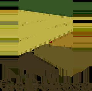 Gobernanza de Dehesas